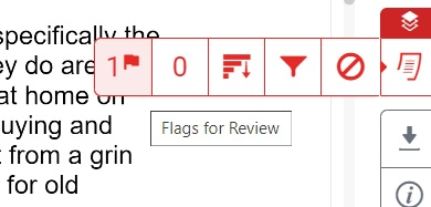 flags for review indicated